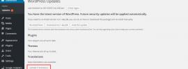 Wordpress Translations Updates