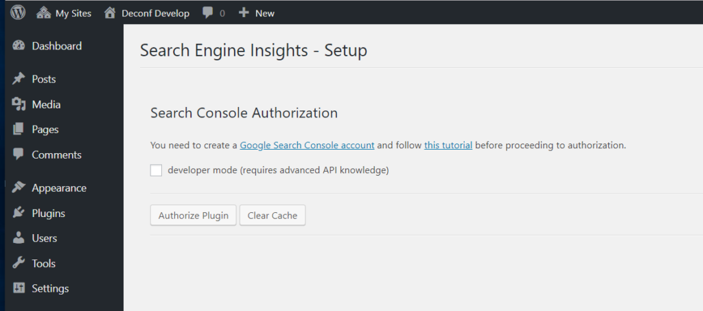 Search Engine Insights authorization screen